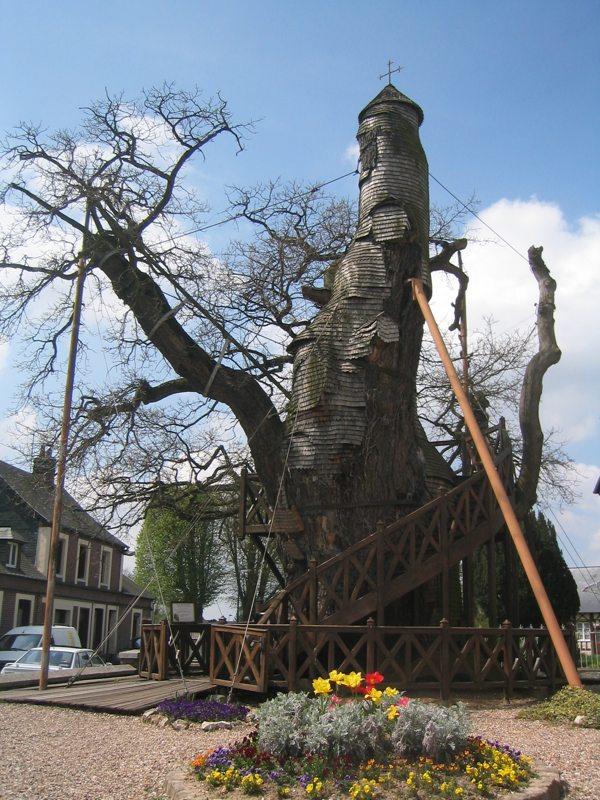 Church in a Tree