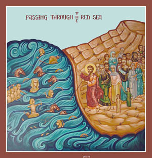 Red Sea icon
